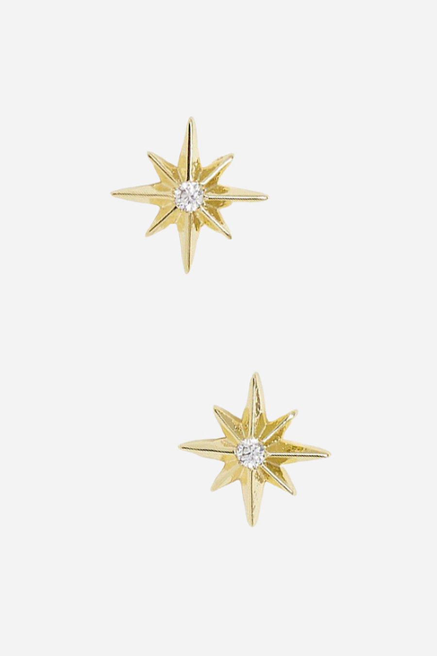 Shashi Northern Star Stud